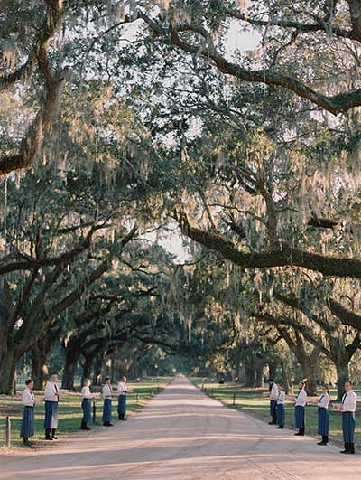 Avenue Of Oaks Boone Hall Wedding ceremony